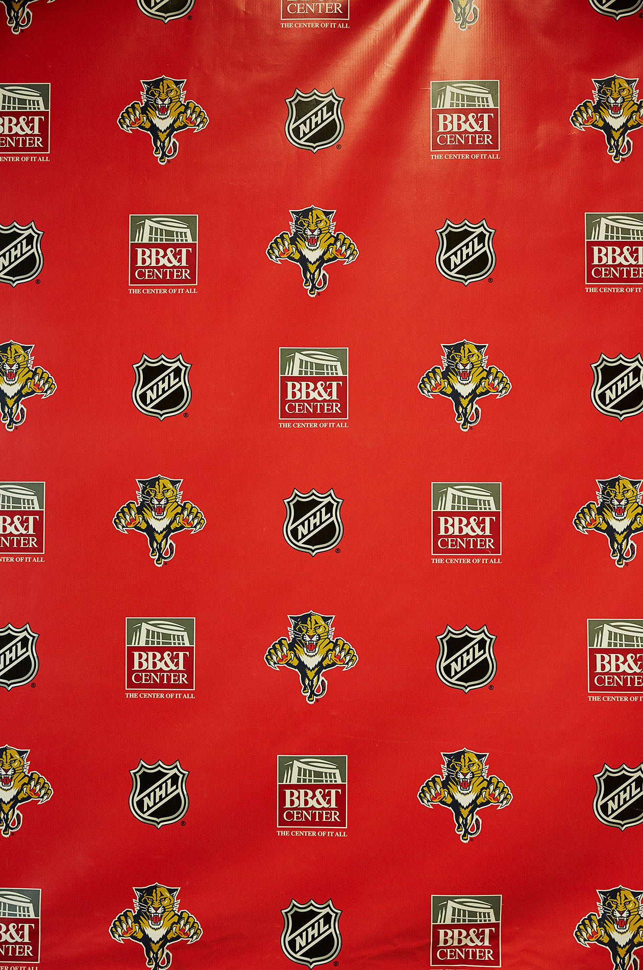 Florida Panthers Backdrop - Steve Craft Photography - Phoenix Arizona Corporate Photographer