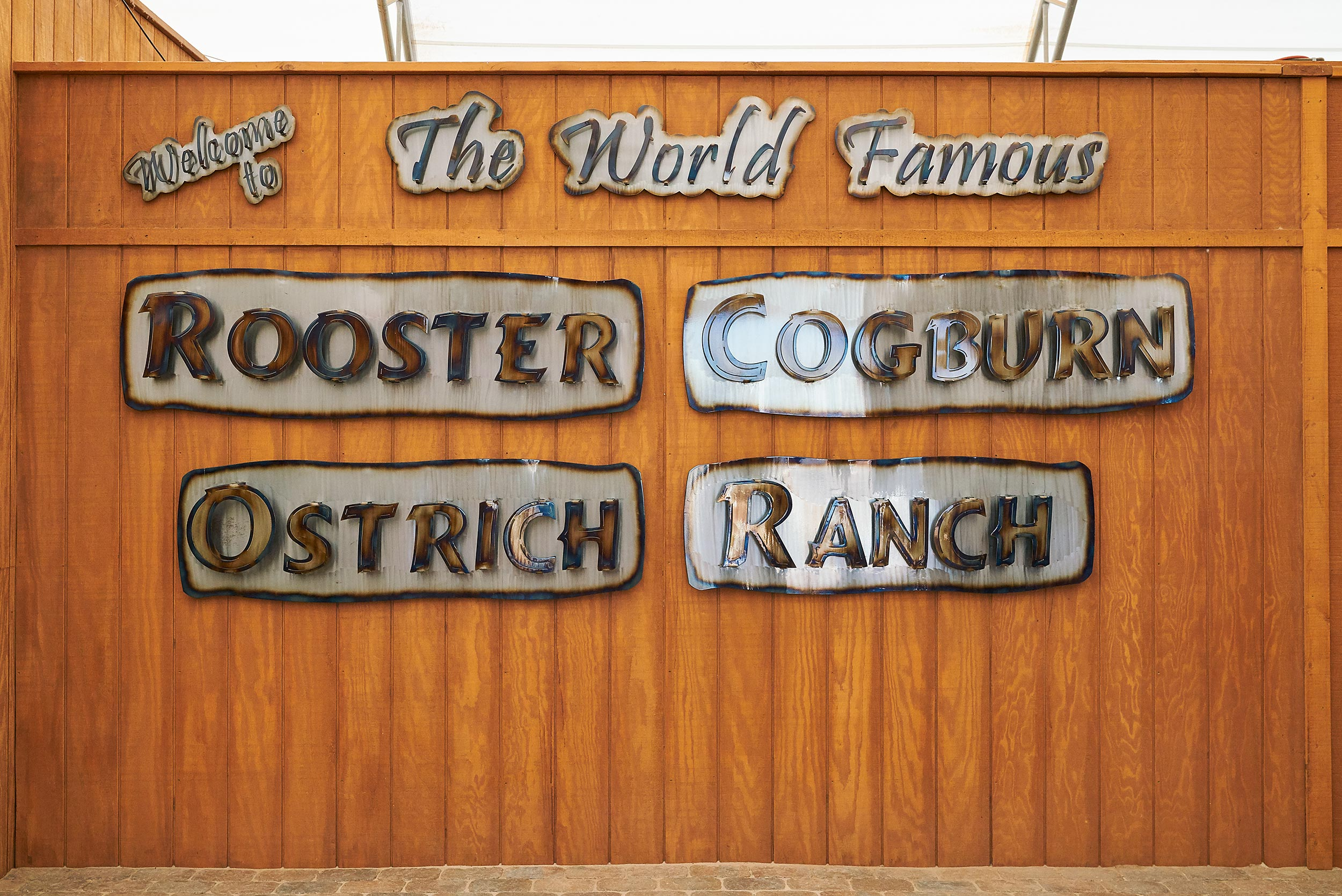 Welcome to Rooster Cogburn - Steve Craft Photography - Phoenix Arizona Photographer